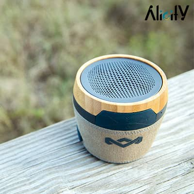 the house of marley chant speaker